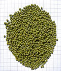 Green-Mung-Beans-Whole@