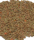Red-Whole-Lentils