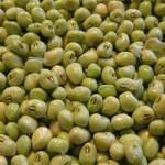 field_peas